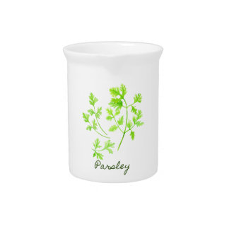 Watercolor Herb Parsley Illustration Pitcher
