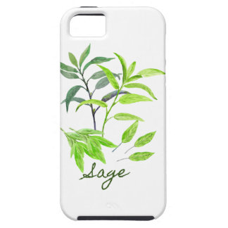 Watercolor herb sage illustration iPhone 5 cases