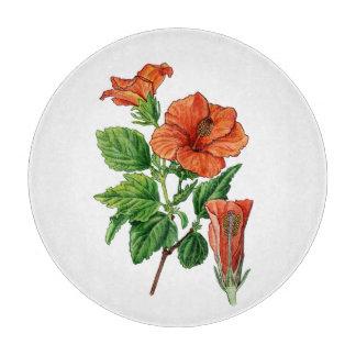 Watercolor Hibiscus Boards