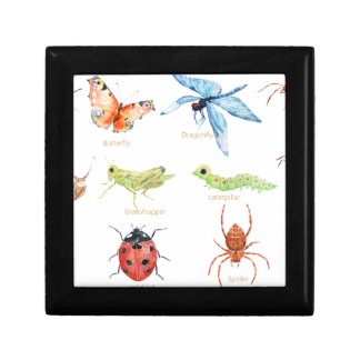 Watercolor insect illustration jewelry boxes