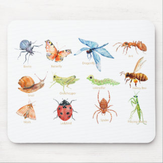 Watercolor insect illustration mouse pad