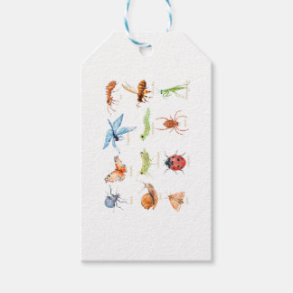 Watercolor insect illustration pack of gift tags