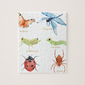 Watercolor insect illustration puzzles