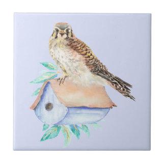 Watercolor Kestrel Sparrow Hawk Bird Chicken Ceramic Tile