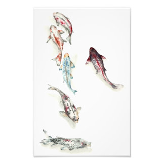 Watercolor Koi Fish Photo Print