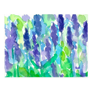 Watercolor Lavender Flowers Postcard