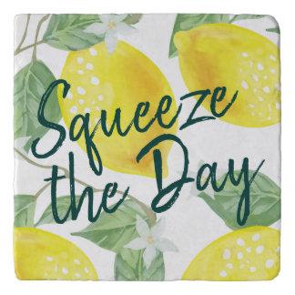 Watercolor Lemons Squeeze the Day Trivet