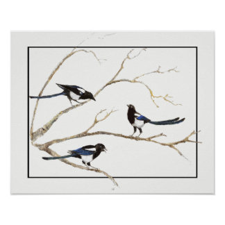 Watercolor Magpie Family Garden Bird art Poster