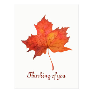 Watercolor Maple Leaf Postcard