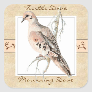 Watercolor Mourning Dove, Turtle Dove Square Sticker