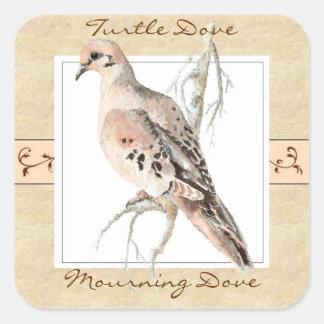 Watercolor Mourning Dove Turtle Dove Square Sticker