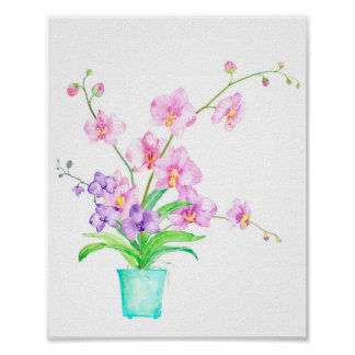 Watercolor Pink Moss Orchid in Pot Poster