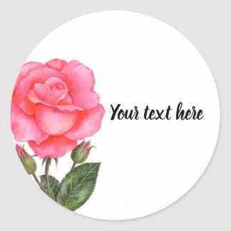 Watercolor Pink Rose Botanical Illustration Classic Round Sticker