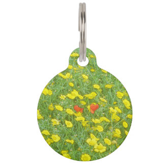 Watercolor poppies pet name tag