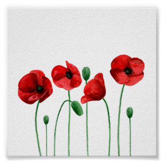 Watercolor poppies print Red flowers Botanical art