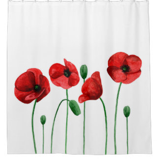 Watercolor poppies. Red flowers. Botanical