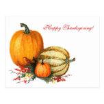 Watercolor Pumpkins Post Card