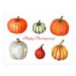 Watercolor Pumpkins Postcard