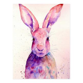 Watercolor Rabbit Hare Portrait Postcard