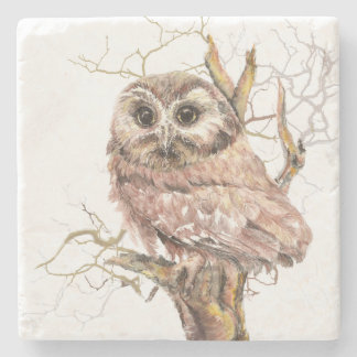 Watercolor Saw Whet Cute Little Owl Bird Nature Stone Coaster