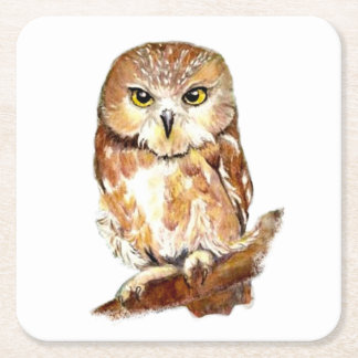 Watercolor Saw Whet Owl Cute Bird Nature Art Square Paper Coaster
