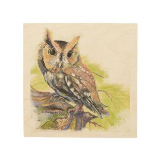 Watercolor Screech Owl Bird Animal Nature Art