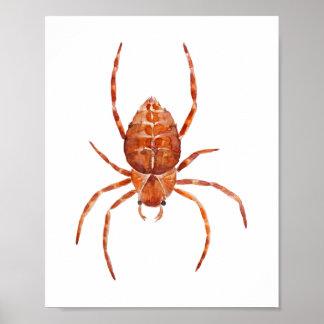 Watercolor spider nursery print