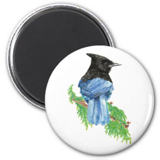Watercolor Stellar Jay, Bird, Nature Collection 2 Inch Round Magnet