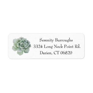 Watercolor Succulent Cactus Mint Green