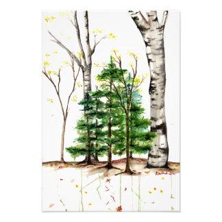 watercolor trees print
