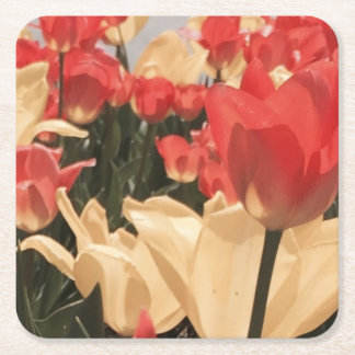 Watercolor Tulips Coasters