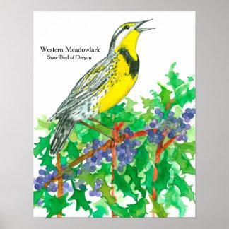 Watercolor Western Meadowlark Bird Poster