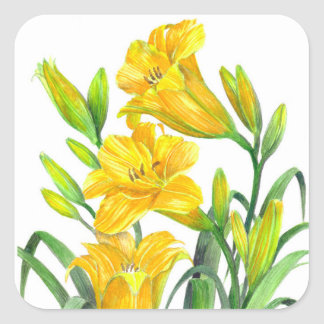 Watercolor Yellow Day Lilies Floral Art Square Sticker