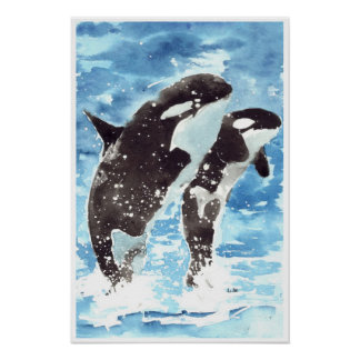 Watercolour killer whales poster