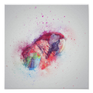 Watercolour Parrot Poster Print