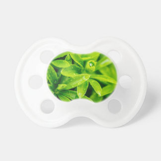 WaterDrops Pacifier