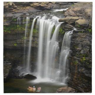 Waterfall 2 napkin