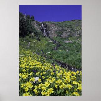 Waterfall and wildflowers in alpine meadow, print
