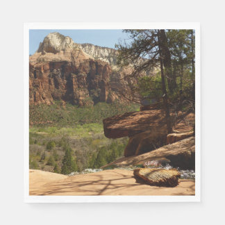 Waterfall at Emerald Pools in Zion National Park Paper Napkin
