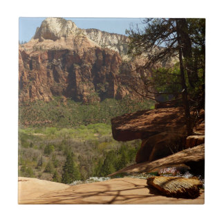 Waterfall at Emerald Pools in Zion National Park Tile