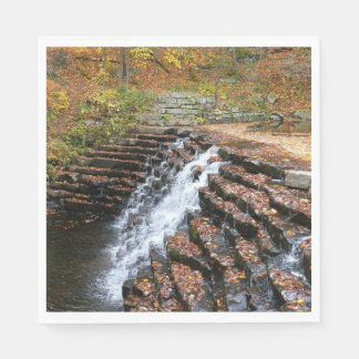 Waterfall at Laurel Hill State Park II Paper Napkin