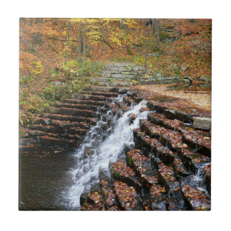 Waterfall at Laurel Hill State Park II Tile