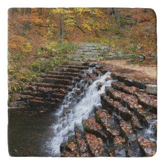 Waterfall at Laurel Hill State Park II Trivet