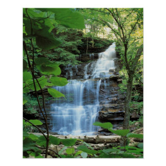 Waterfall at Rickets Glen State Park , Poster