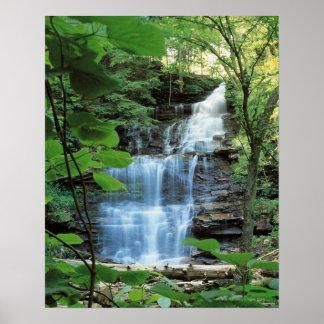 Waterfall at Rickets Glen State Park , Print