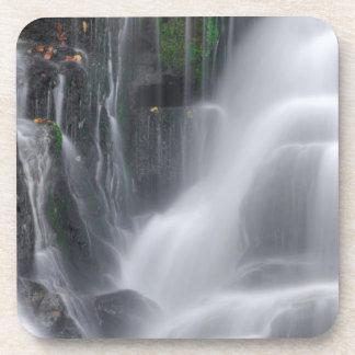 Waterfall Coaster
