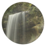 Waterfall Dinner Plates