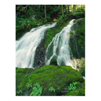 Waterfall falling over the mossy rocks, Mount Postcard