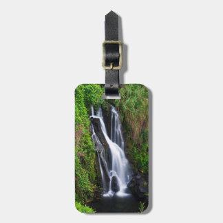Waterfall, Hamakua coast, Hawaii Bag Tag