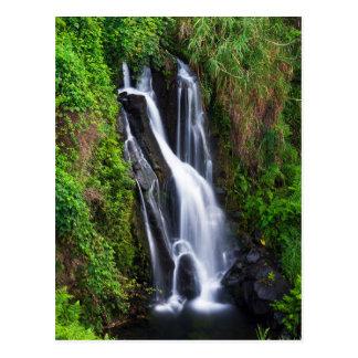 Waterfall, Hamakua coast, Hawaii Postcard